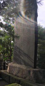 pierre tombal mikado usui